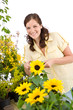 Detalii fotografie Gardening - woman with sunflower and pruning shears