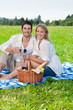 Image details Picnic young happy couple celebrating with wine