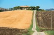 Detalii fotografie scenic view of typical tuscany landscape
