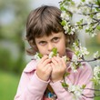 Image details cute baby smells to blossom tree