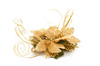 A fényképek részletei golden christmas decorative flower on white background