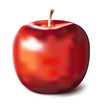 Details der Fotografie hand painted vector red apple for creativdesign