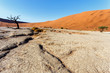 Dettagli della fotografia beautiful sunrise landscape of hidden dead vlei in namib desert with blue sky this is best place in namibia