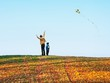 Dettagli della fotografia mother and son fly a kite