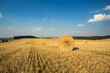 Detalii fotografie beautiful landscape with straw bales in harvested fields czech republic vysocina with blue sky and clouds