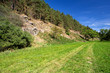 Details der Fotografie rural scene with path and forest and sun light doubkov vysocina czech republic