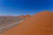 Dettagli della fotografia dune 45 in sossusvlei namibia view from the top of a dune best place in namibia dune 45 is the biggest dune in the world