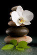 Detalii fotografie balancing pebble stones and white flower orchid with water drop zen stone on black background spa tranquil scene concept with reflection