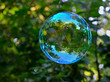 Detalii fotografie soap bubble which shines a beautiful blue flying through the air