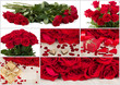 A fényképek részletei collection of fresh valentine red roses and heart love concept collage wallpaper