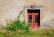 Detalii fotografie old wooden door with an ornament in the old wall and overgrown bush and grass