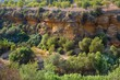 Details der Fotografie gardens in the valley of the temples in agrigento italy