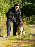 Photo policeman with a dog