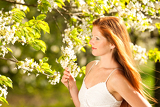 Fotografie Young woman enjoying spring under blossom tree