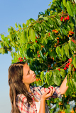 Fotografia Cherry tree harvest summer beautiful woman sunny