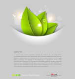 Photo Fresh leaves vector background template