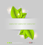 Fotografia Fresh leaves vector background template
