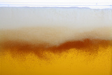 Fotografia beer with foam
