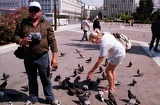 Fotografie Athens. Syntagma Square, photographer, wife and birds. Greece.