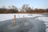 Photo Pond in winter