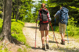 Photo Hikers on path with trekking poles