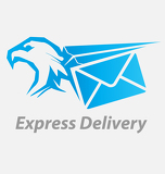 Fotografia Express, fast delivery icon