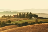 early morning on countryside san quirico d