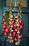 Fotografia the south italy area calabria tropea city national food  red onion