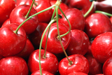 closeup cherry  as background