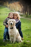 Photo mother and son in the park along with a golden retriever