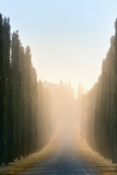 Fényképek idyllic tuscan landscape with cypress alley at sunrise near pienza vall dorcia italy europe