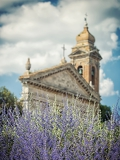 Fotografie blooming lavender background with the church in tuscany italy