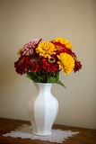 beautiful gerbera flower bouquet on table