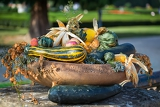 autumn decoration with pumpkins corn and juniper