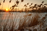 Photo beautiful winter sunset on the frozen lake