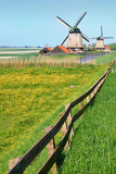 dutch mill in netherlands