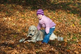 Fotografia little girl with a dog in the park in autumn