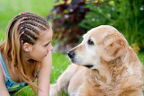 Fotografia little girl and a dog in an outdoor setting