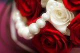 blossom red and white roses with beads