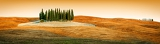 Fotografie scenic view of typical tuscany landscape