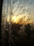 frost and sun, winter lace and sun