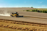 yellow harvester combine on field harvesting wheat in sunny weather