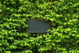 billboard label in green leaf background with place for your text