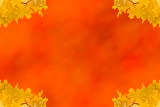 Fotografie autumn maple leaves empty frame with space for text