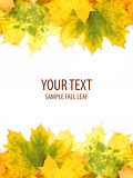 autumn leaves frame with space for your text