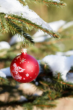 christmas balls on outdoor snowy tree in forrest
