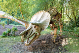 Photo prehistoric dinosaur triceratops fossil skeleton over natural background