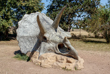Photo prehistoric dinosaur triceratops fossil skull model outdoor
