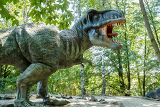 Fotografie model of big tyranosaurus rex in the jungle