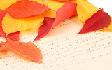 handwritten old letter with color autumn leaves